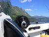 Bonnie hijacks the skipper's seat