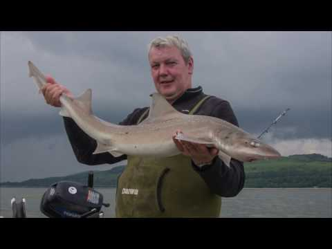 Showcasing Sea Angling in Scotland