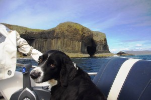 Bonnie doesn't seem too impressed with Fingals Cave on Staffa
