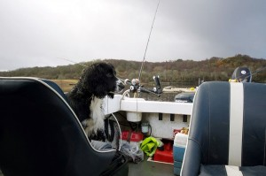 Bonnie-supervises-the-fishing-at-Ardchattan