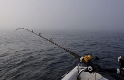 Thick mist or haar off Dunbar