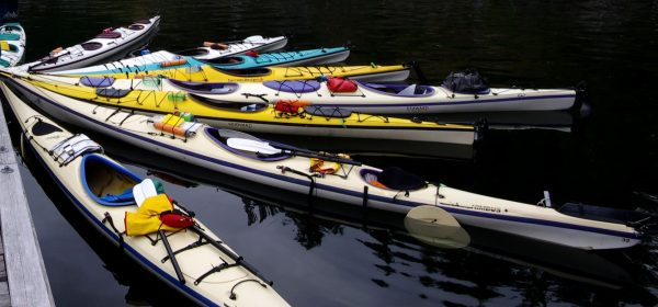 Our fleet of sea kayaks awaits