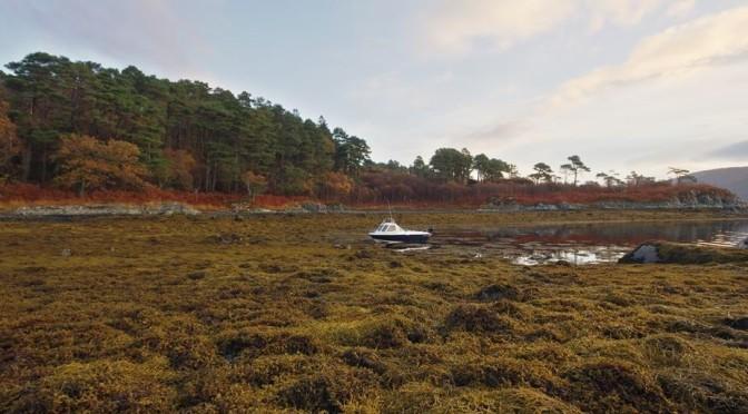 Boat camping in Sunart