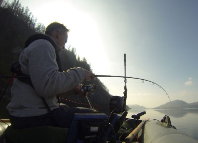 Fish on - but not much of a bend in the rod