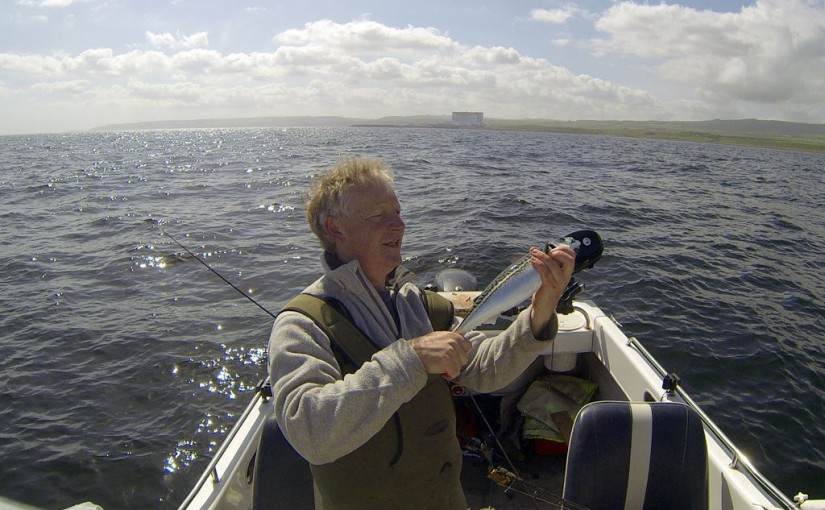 A nice Dunbar mackerel