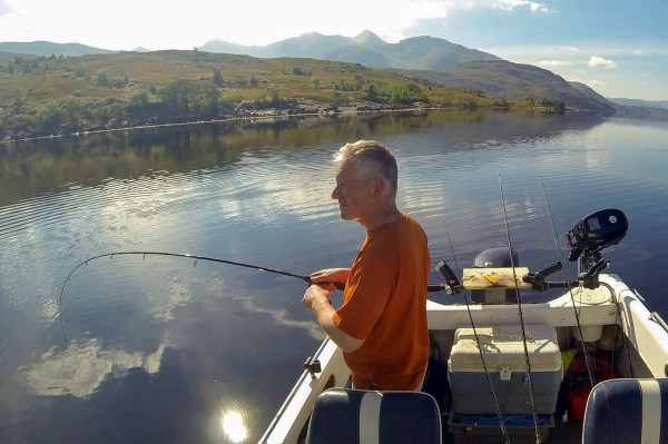 Codling on a spinning rod, Loch Etive