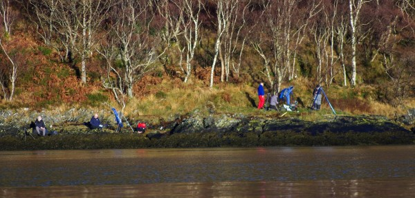 Leven attracts good numbers of shore fishermen