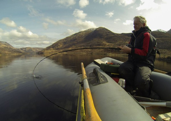 Playing a thornback ray from my inflatable, Loch Leven