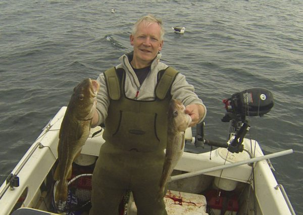 A brace of codling from Dunbar, summer 2016
