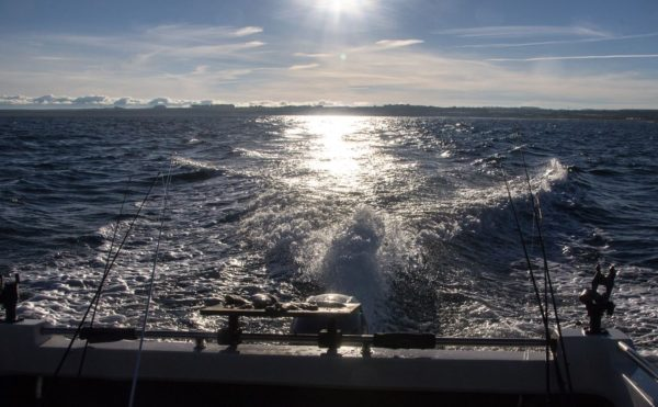 Freezing, thick fog gives way to bright November sunshine on the seas off St Andrews