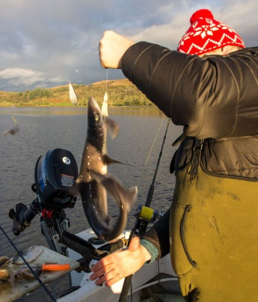 Ian with a small Etive spurdog from Ardchattan