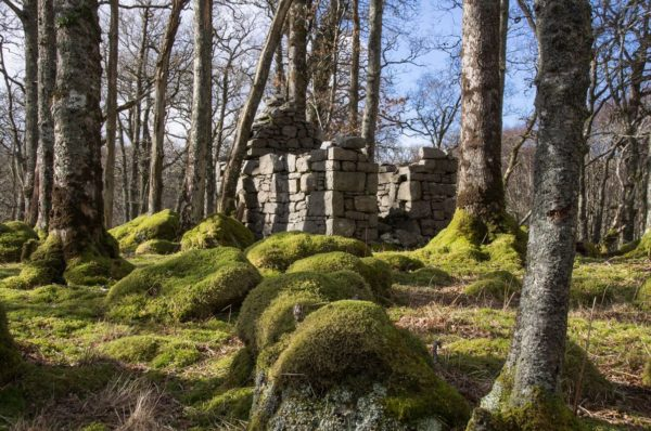 The shell of an old Quarryman's hut surrounded by moss covered boulders and trees near the shore of Loch Etive