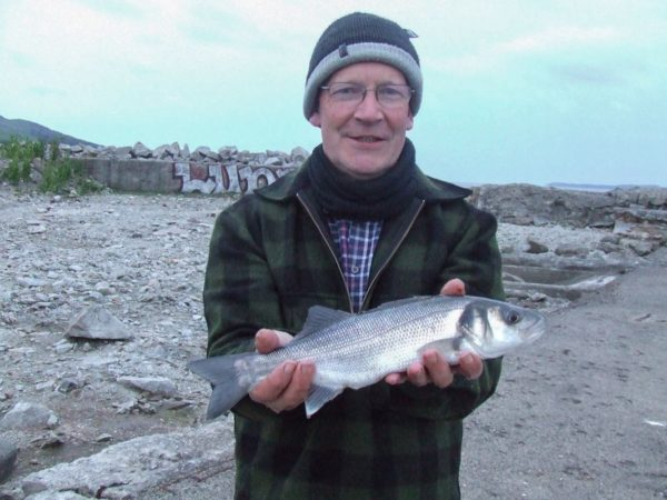 A small bass from Carsluith on the Cree Estuary
