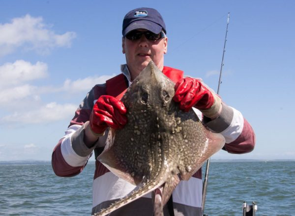 Ian holds a very spiny thornback ray which was armed front and back with big hook-like spikes