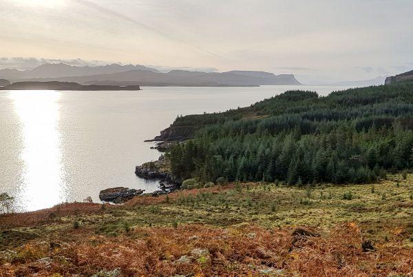 Western edge of Loch Bracadale
