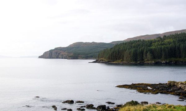 The western shores of Loch Bracadale are heavily wooded and fringed with rock and volcanic cliffs
