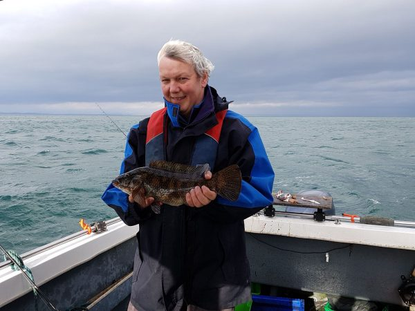A nice, dark coloured, ballan wrasse for Ian, caught off St Andrews