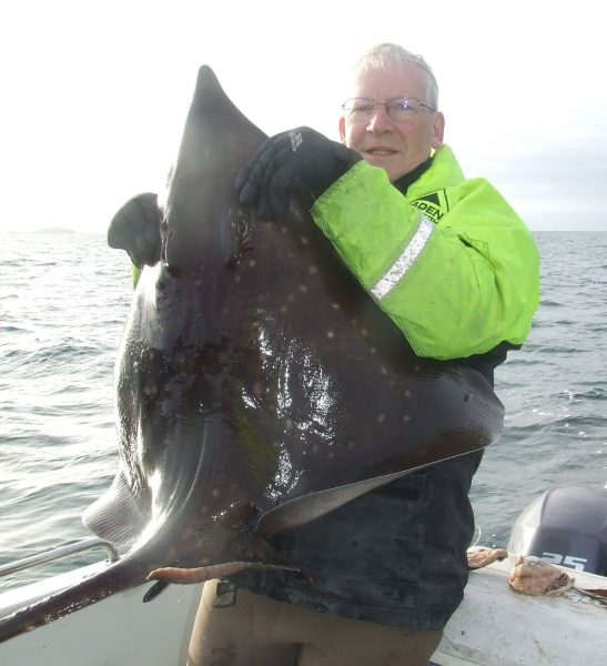 Small skate of around 32lb taken in January 2018 from the Firth of Lorne, near Kerrera