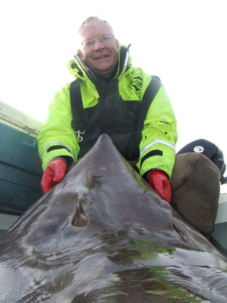 A 169lb skate taken from 520 feet of water near Kerrera, Oban.