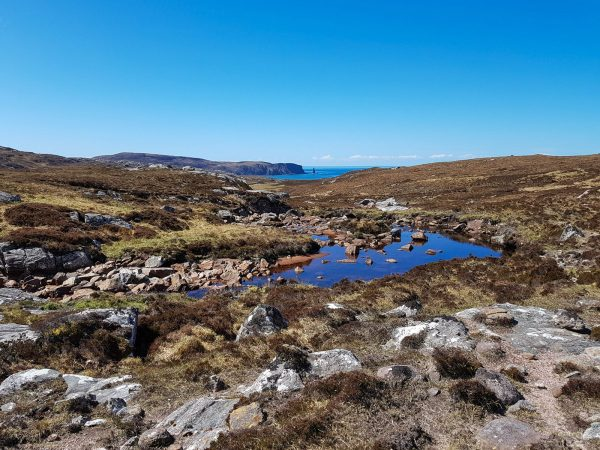 No trees allowed - just heather, rock and water in this very exposed environment