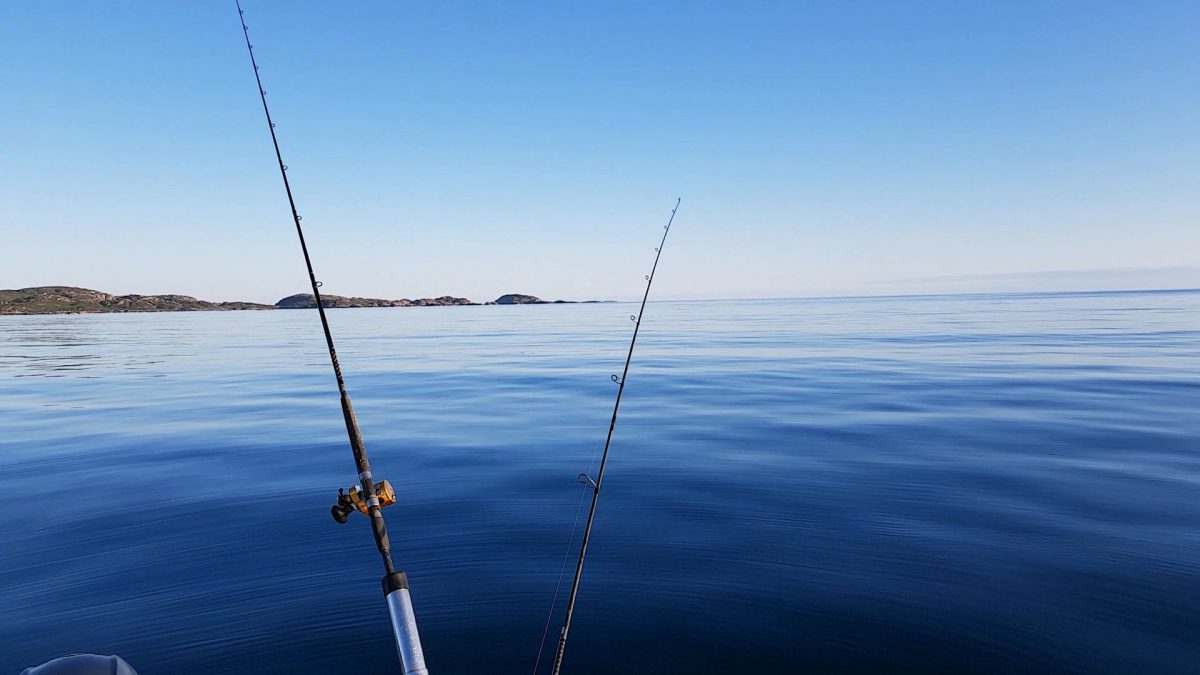 Drifting through the Sound of Iona on a perfectly calm blue sea, as the sun sets over Iona
