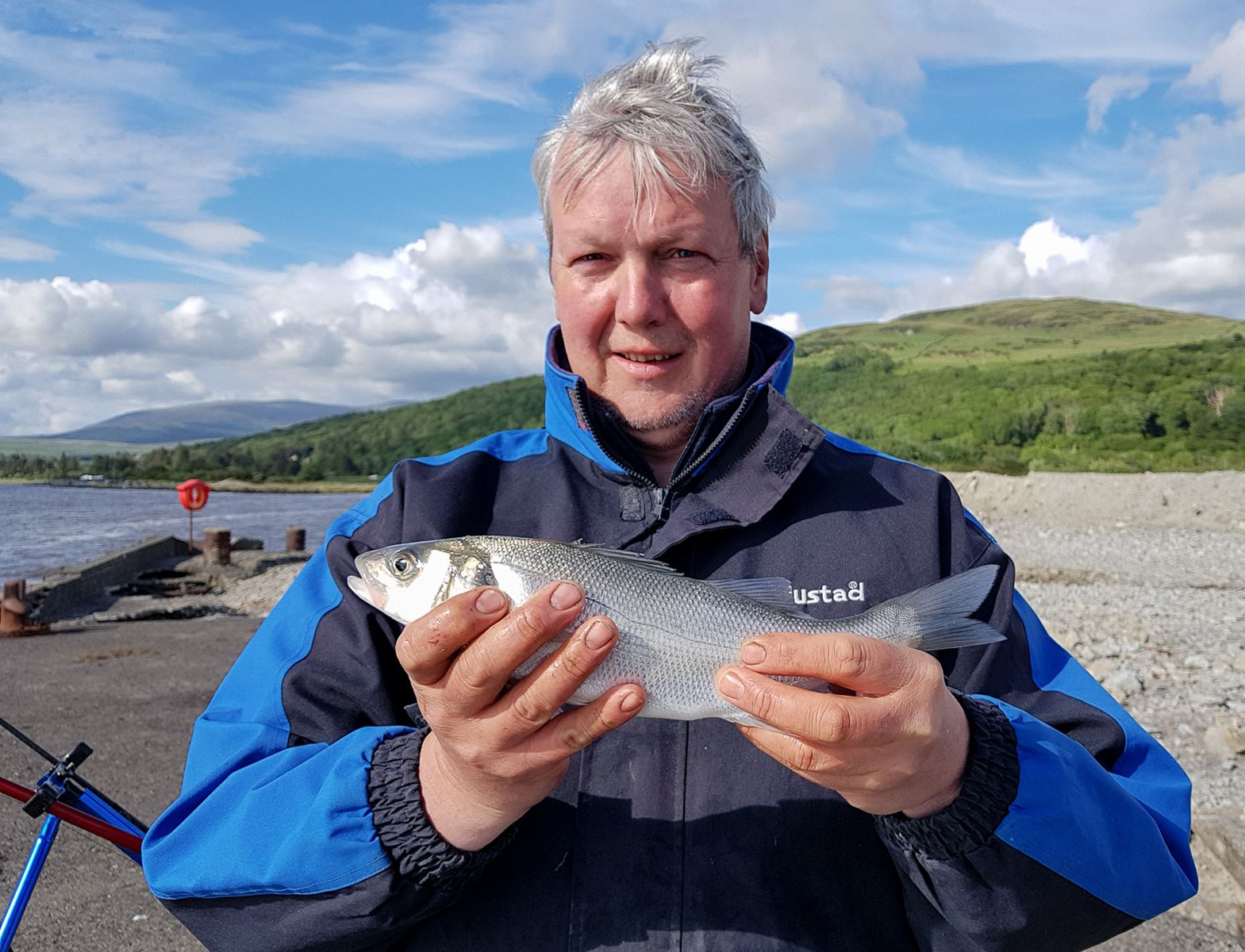 A small but pretty little bass from Carsluith pier, River Cree, Galloway