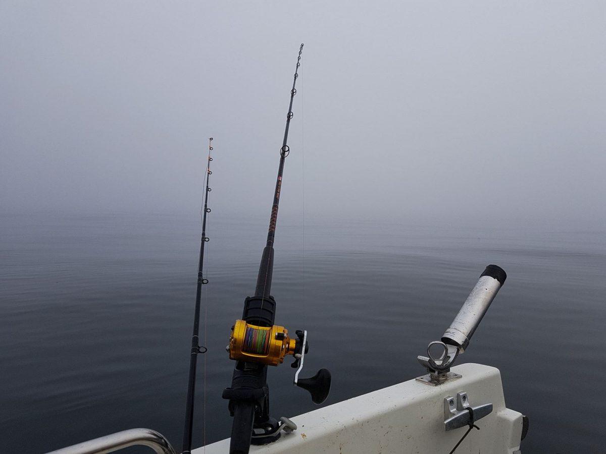 Fogbound at Dunbar
