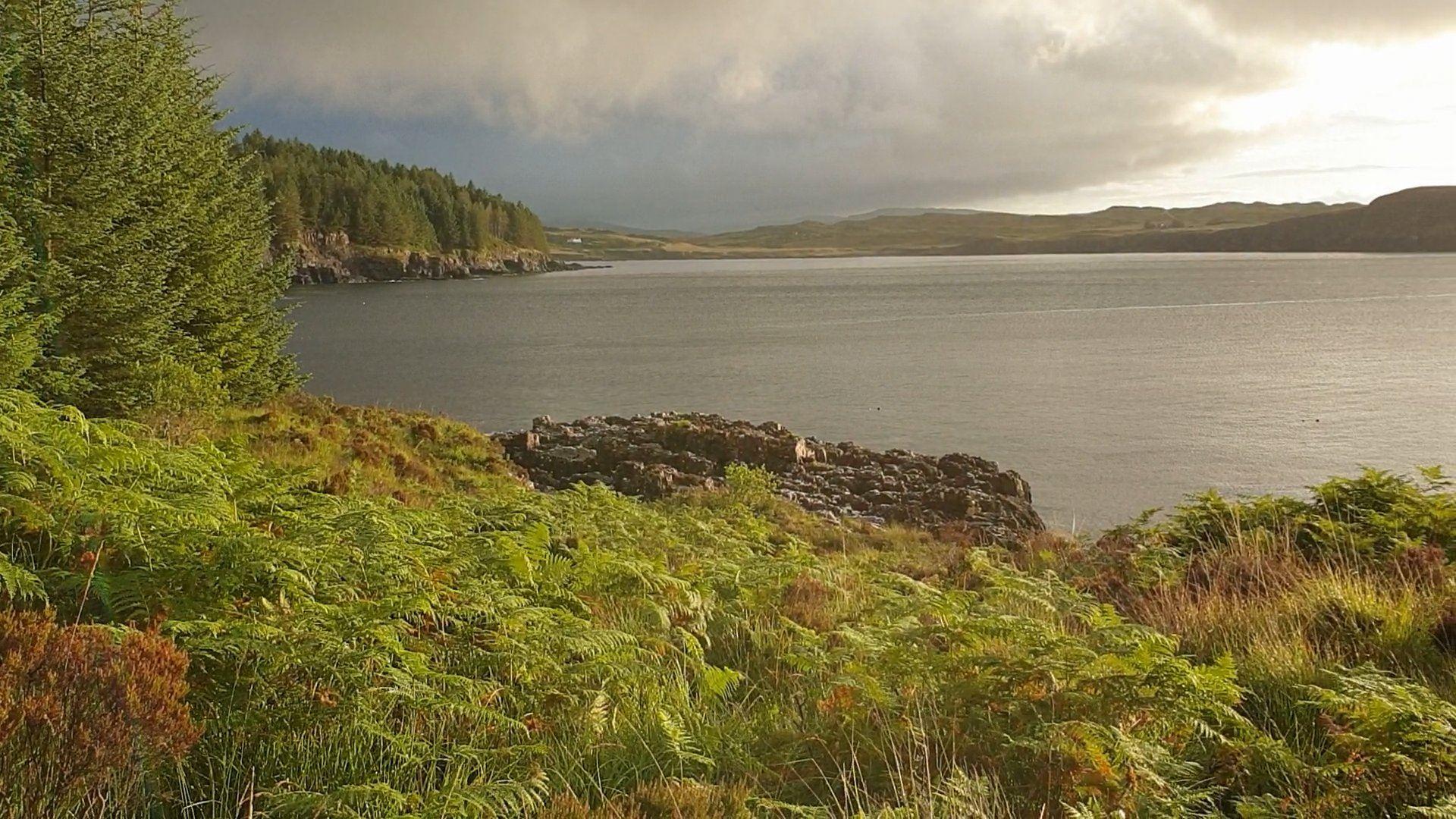 A fine early morning light over Loch Bracadale, Skye