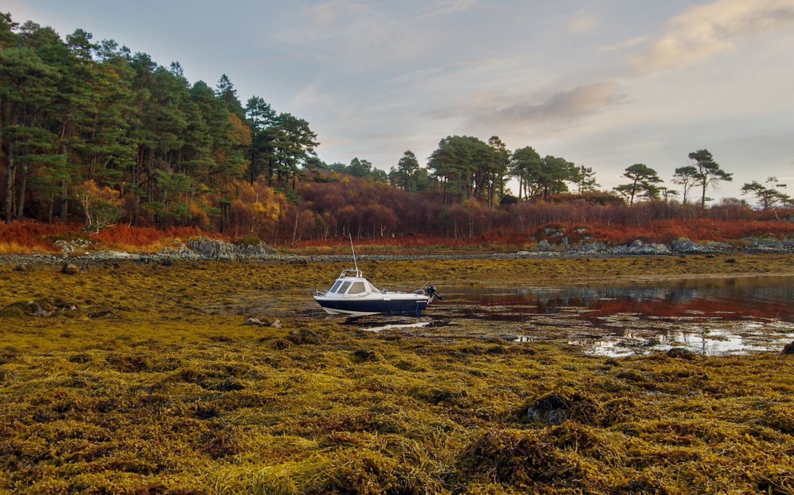 """My Warrior 165 anchored amongst thick weed in the ancient hidden Viking harbour of Dun Ghallain (""""Fort of the Storms"""") on Loch Sunart."""